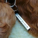 Square Peg Pet Name Tag
